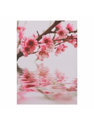 Картина принт цветя HM7153.04
