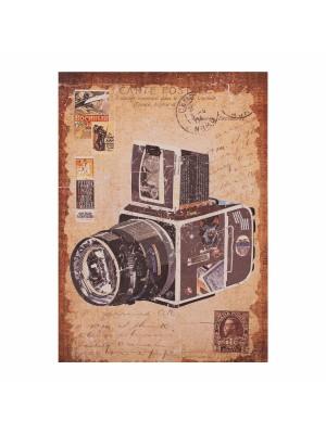 Картина принт ретро фотоапарат HM7153.09