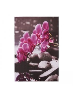 Картина розова орхидея HM7154.12 60X90X2.5 cm.