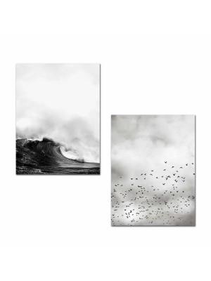 Картина от 2 елемента черно бяла природа HM7203.01