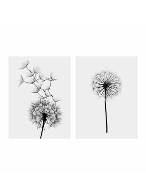 Картина принт от 2 елемента dandelion  HM7203.02