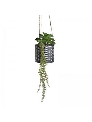 Кашпа за окачване с растение