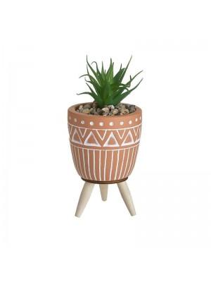 Кашпа с растение