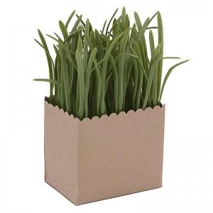 Декоративно растение