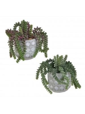 Изкуствено растение в кашпа 2 дизайна