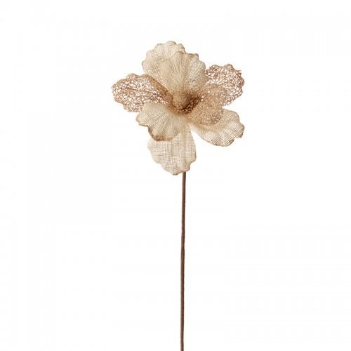 Коледно цвете