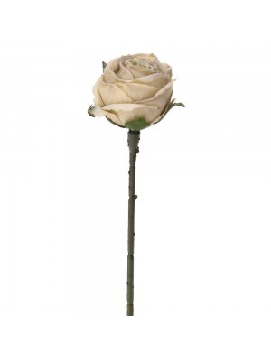 Кремава роза 28см