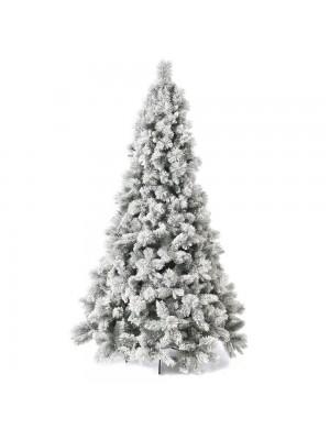 XMAS TREE SUGAR PINE 240CM